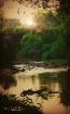 River bottomland