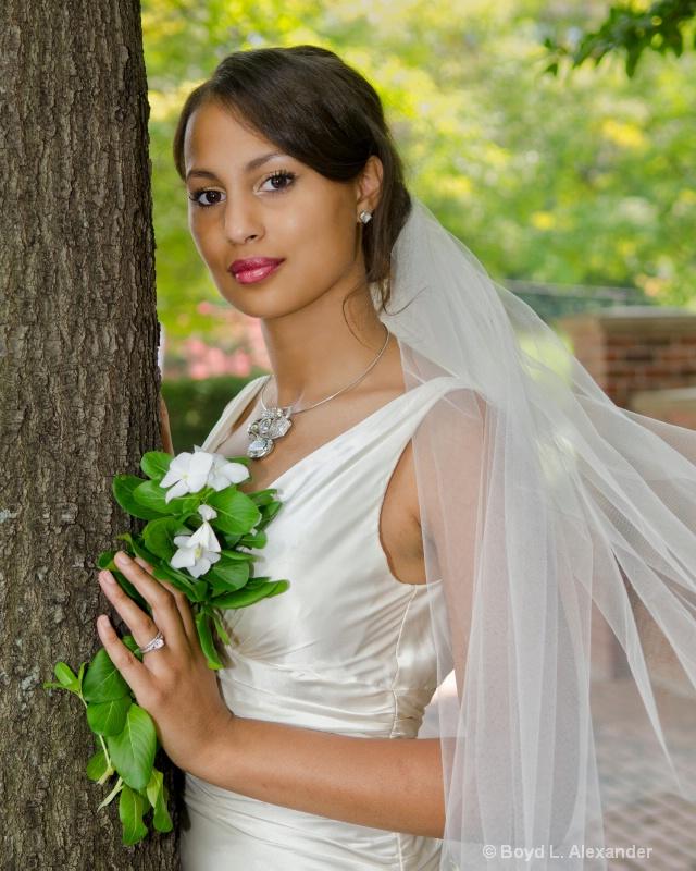 The Bride..