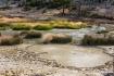 Yellowstone - Boi...