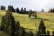 Yellowstone - Mea...