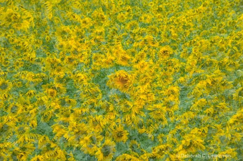 Sunflower Abstract - ID: 13230988 © Deborah C. Lewinson