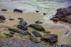 Maine Rocks!