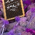 © Lesliediana Jones PhotoID # 13254072: Lilac sachets at Nice flower market