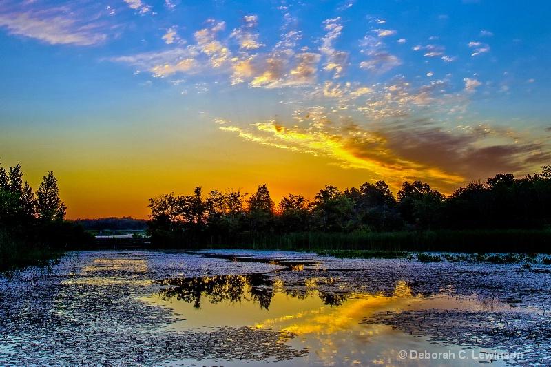 A New Day - ID: 13281885 © Deborah C. Lewinson