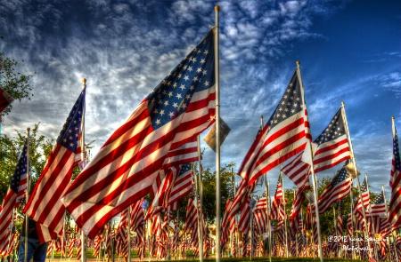 Tempe, AZ Healing Field Flags