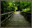 September Stroll