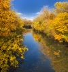 Evanston Canal in...