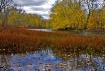 Concord River Fal...