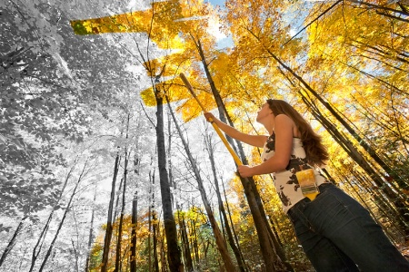 Photography Contest Grand Prize Winner - October 2012: First Coat of Fall