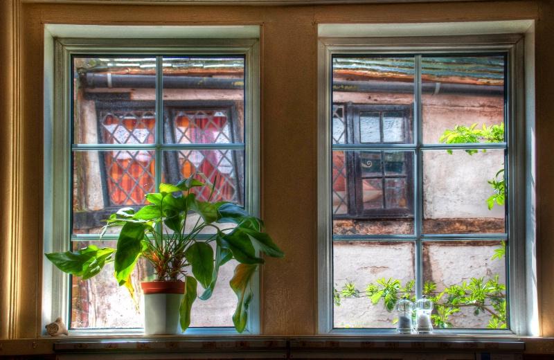 The Window Sill