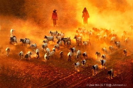 Photography Contest Grand Prize Winner - November 2012: Feeding