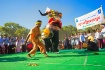 elephant dance fe...