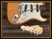 Guitars By Leo