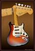 Classic Fender St...