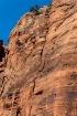 Zion Climbers