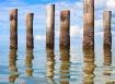 Reflecting Posts