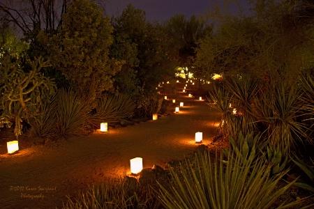 Lumi-lit Path