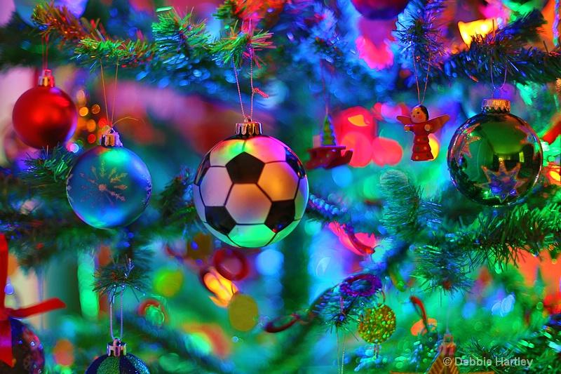 Wishing you a bright Merry Christmas! - ID: 13604194 © Debbie Hartley