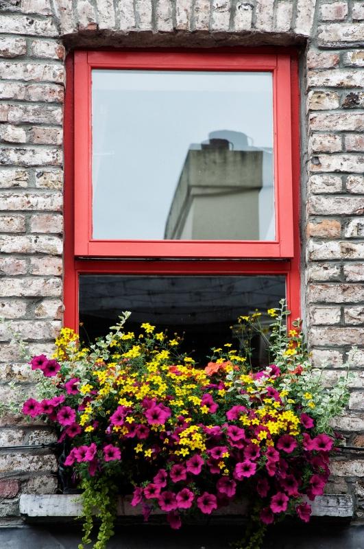 Reflection  on a Window - ID: 13605626 © David Resnikoff