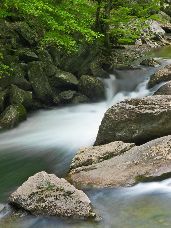 Little River - ID: 13632475 © Philip B. Ludwig