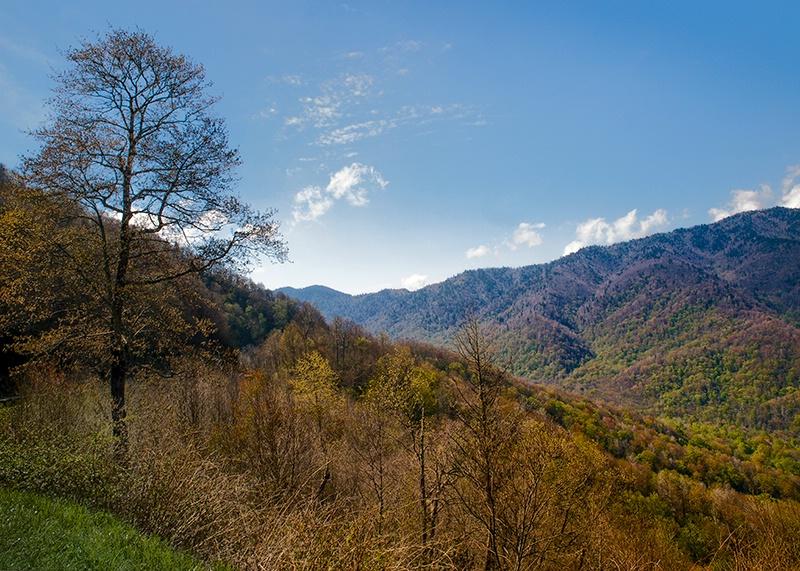 Mountainside View - ID: 13641740 © Philip B. Ludwig