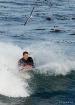 Surfer's Best...
