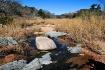 ~ Sandy Creek ~