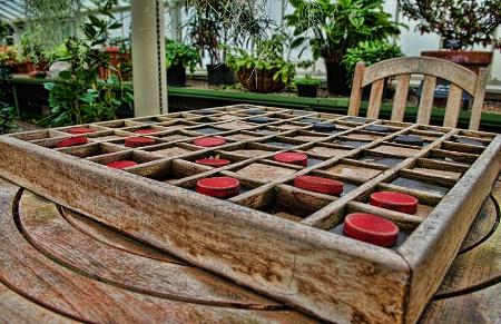 Checkers Inside The Garden