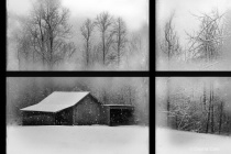 Photography Contest Grand Prize Winner - February 2013: Snow Day in B&W