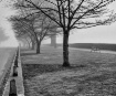 Season of the Fog