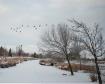 Snow scape in Ren...