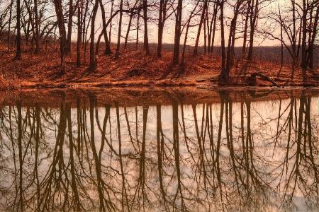 Maple Lake Reflections