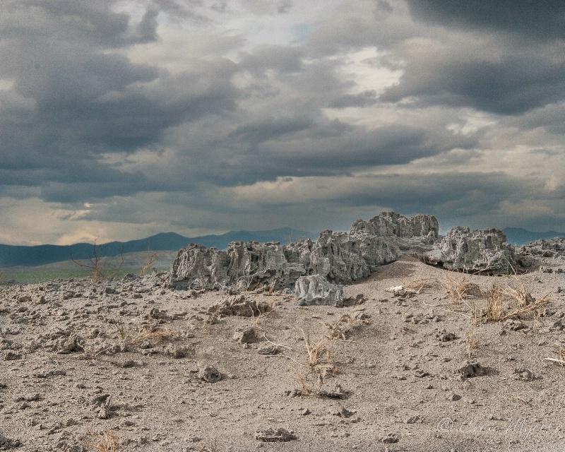 Mono Lake Sand Tufas - ID: 13793373 © Craig W. Myers