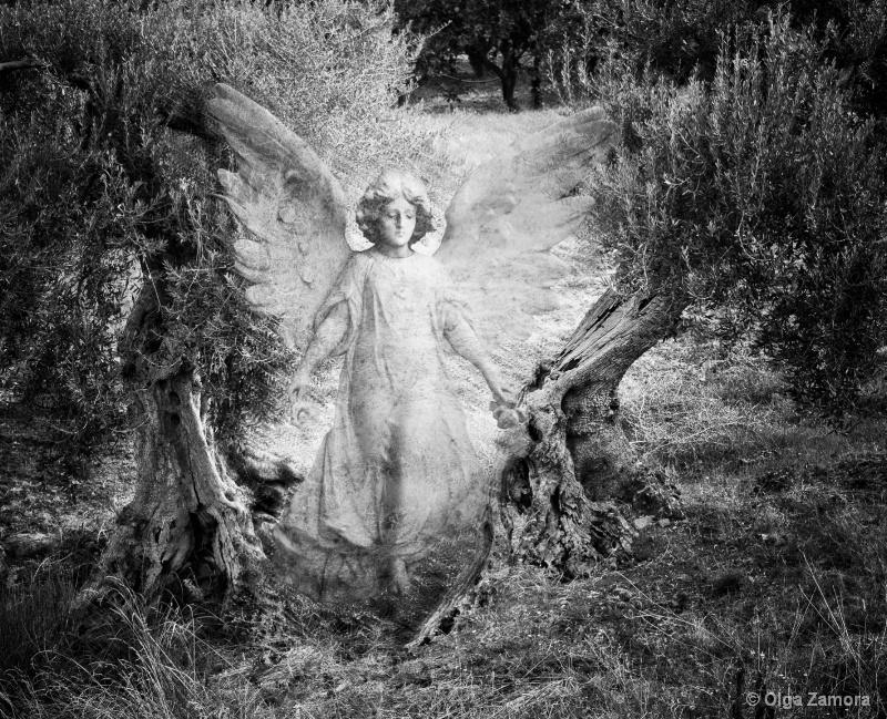 Manifesting Angel - ID: 13801064 © Olga Zamora