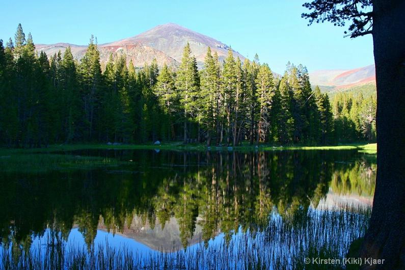 Greetings From Yosemite