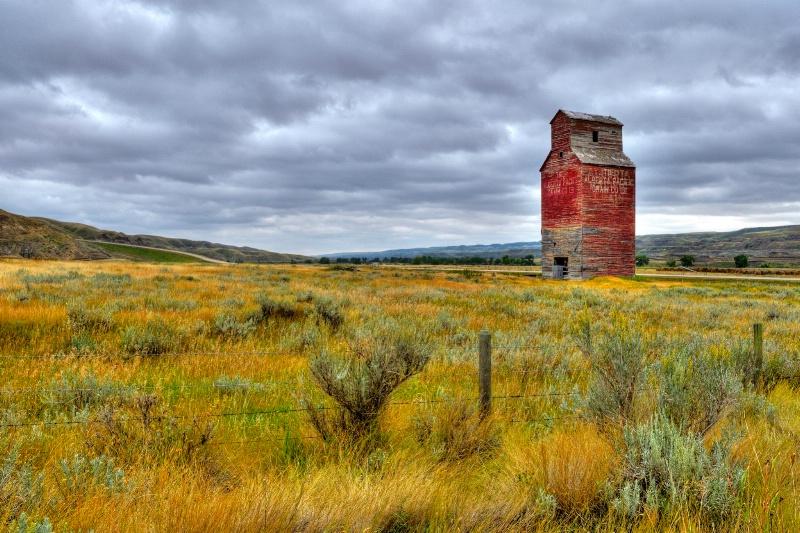 """""""Lone Prairie Sentinal"""""""