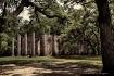 Sacred Ruins