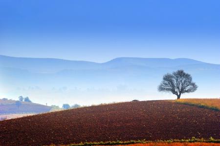 Scene of Winter in Shan State