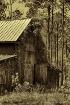 Orton Plantation