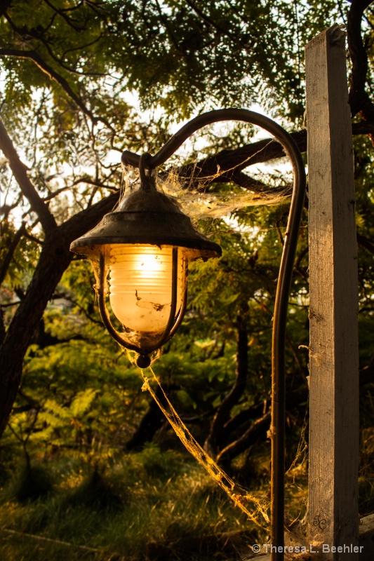 Old Lantern - ID: 13848337 © Theresa Beehler