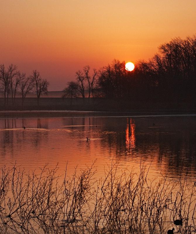 Swan Lake Sunrise