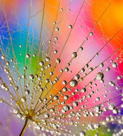 A few drops of color