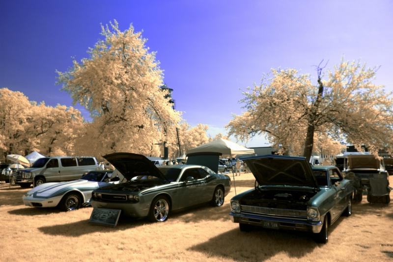 Cars in IR - ID: 13919801 © Sibylle Basel