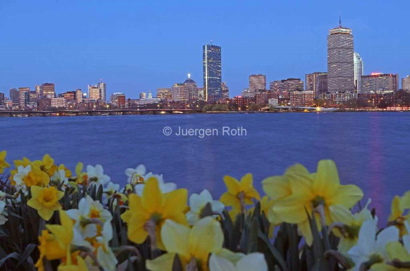 Spring into Boston - ID: 13920734 © Juergen Roth