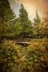 Clark Gardens 2
