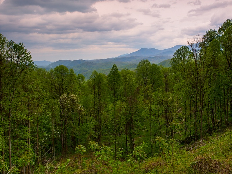 View from Maloney point overlook - ID: 13946083 © Philip B. Ludwig