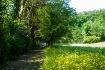 Wonderful walk