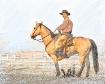 Stately Cowboy