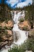Tangle Creek Albe...