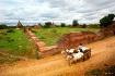 Ancient City Baga...